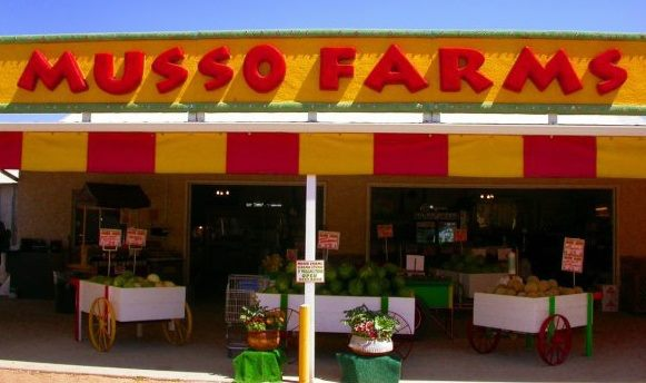 Musso Farms